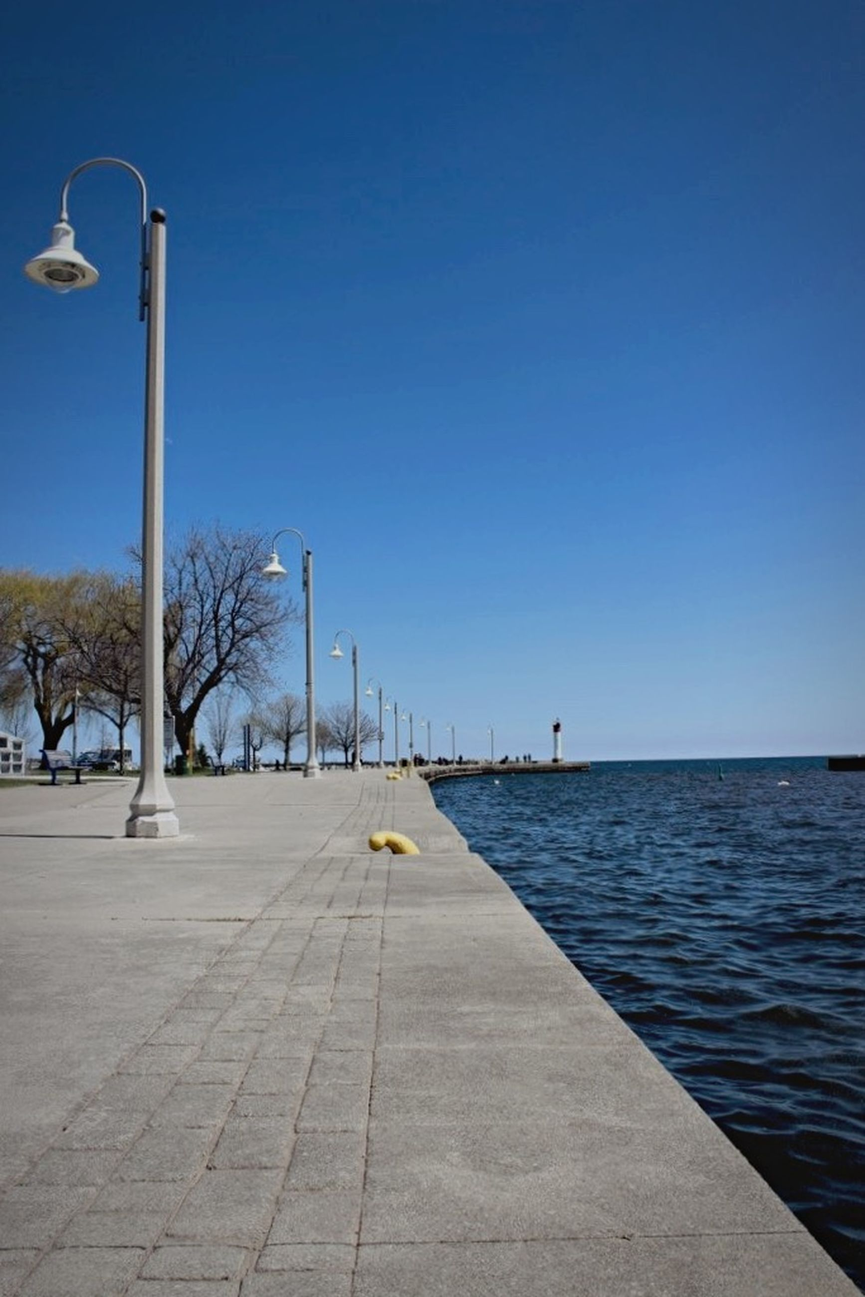 clear sky, blue, copy space, water, sea, street light, tranquility, tranquil scene, bird, nature, scenics, horizon over water, tree, beauty in nature, day, the way forward, outdoors, transportation, pier, sunlight