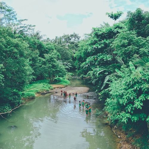 Water Tree Real People Nature Day Outdoors Men Leisure Activity Togetherness Growth Beauty In Nature Plant People Friendship Sky Mammal