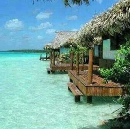 Quintana Roo Beach Photography Beach View Blue Sky Beachday Beachlovers Beauty In Nature Nature Outdoors Thatched Roof Beach No People Vacations Palm Tree Tranquility Sky Sea Water Tranquil Scene Architecture