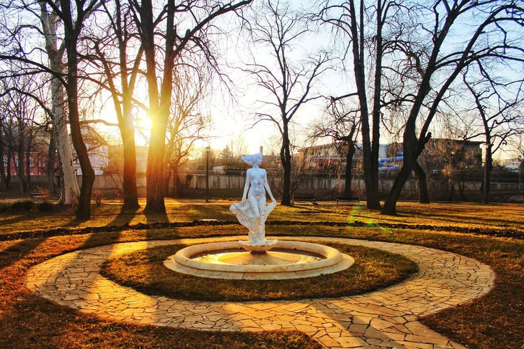Rear view of woman standing at park during sunset