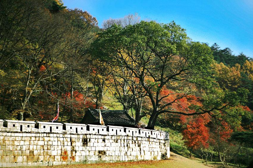 Munkyung Munkyungsaejae Autumn Foliage Autumn Colors Autumn Leaves Autumn South Korea Korea Castle