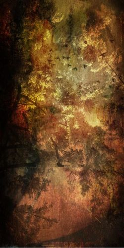 Hidden face in blended landscape Complicated Abstract Artist's Canvas Backgrounds Birds Blended Close-up Damaged Dirty Grunge Hidden Face. IPhoneography Painted Image Paper Rough Textured  Yellow