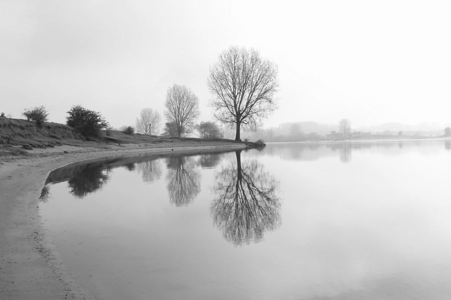 Reflection Tree Water Nature No People Landscape EyeEmBestPics Capture The Moment Eye4photography  Reflection_collection April 2017 Maas Hedel Walking Walking Alone... Tree_collection  Tree_collection  Water_collection Tree_collection  Water Reflections Black & White Blackandwhite Photography Snapspeed Tree_collection  Springtime Black And White Friday