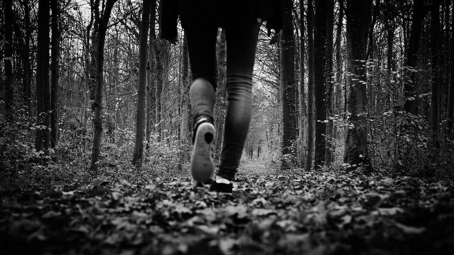 Low Section Of Person Walking On Field Against Trees