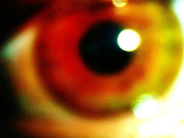Eye see you Humaneye MykeEye
