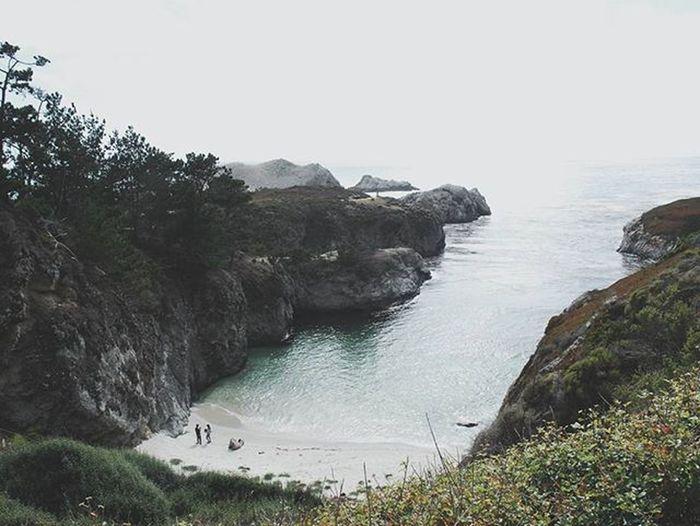 china cove, CA 🌱 Chinacove Trees USA Roadtrip Summer Sea Rocks White Vscocam Nikond200 California Lost In The Landscape California Dreamin The Great Outdoors - 2018 EyeEm Awards