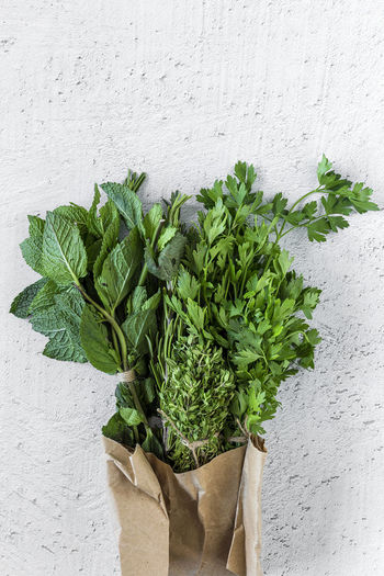 Close-up Day Food Food And Drink Freshness Green Green Color Growth Healthy Eating Herb Indoors  Leaf Leaves Mint Leaf - Culinary Nature No People Plant Plant Part Raw Food Vegetable Wall - Building Feature Wellbeing