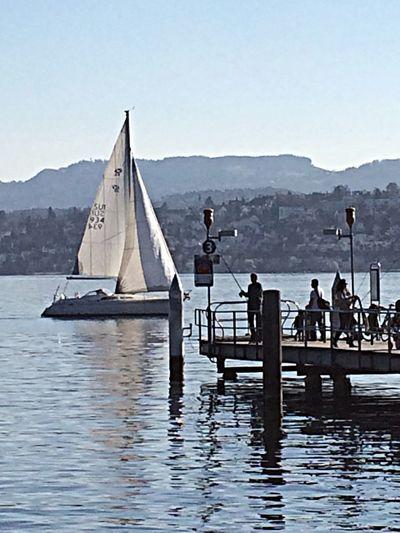 EyeEmSwiss Zürich ...zürisee... Sailing