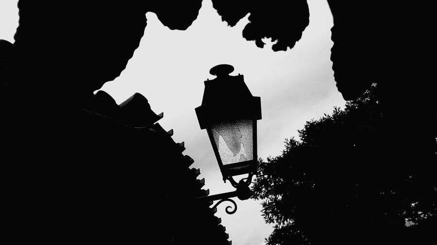 Light And Shadow Hanging Out