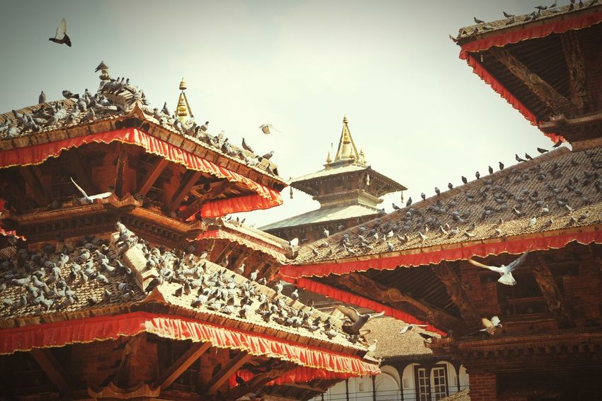 Nepal Hello World Temple Architecture Pray For Nepal The Traveler - 2015 EyeEm Awards Amazing Architecture Sound Of Life