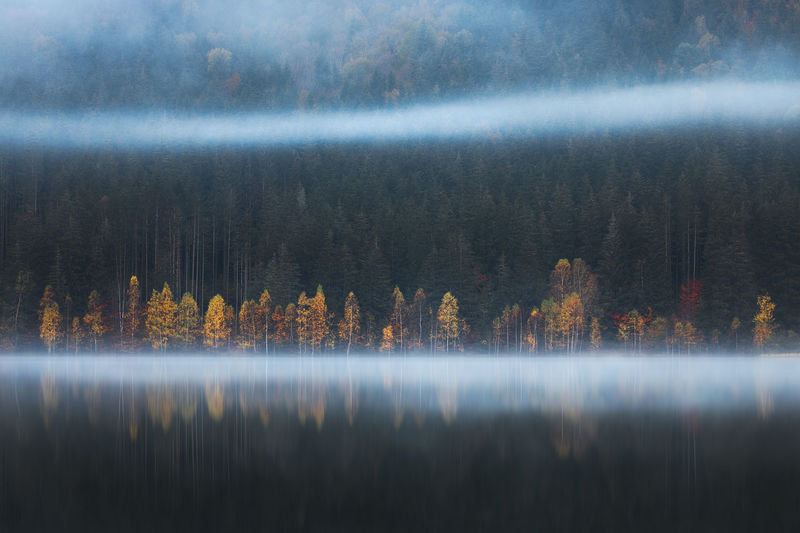 Sfanta ana lake from harghita in autumn season.