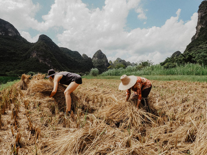 There are many ways to experience culture, none harder than manual labour China Yangshuo Cultrue Harvest Chinese EyeEm Selects Mountain Sky Cloud - Sky Cultivated Land Farmland Rice Paddy Farm Agriculture Bale  Plowed Field Hay Bale