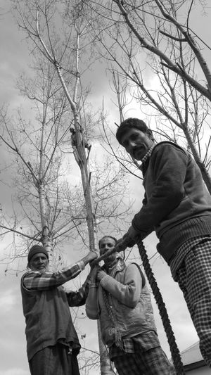 Men at work Men Cap Winter Warm Clothing Low Angle View Outdoors Tree People Bare Tree Adult Adults Only Day Snow Cold Temperature Human Body Part Sky Only Men Streetphotography Eye4photography  Kashmirdiaries EyeEm Gallery Eye4photography  EyeEm Masterclass Eye4photography  Kashmirphotographers Welcome To Black