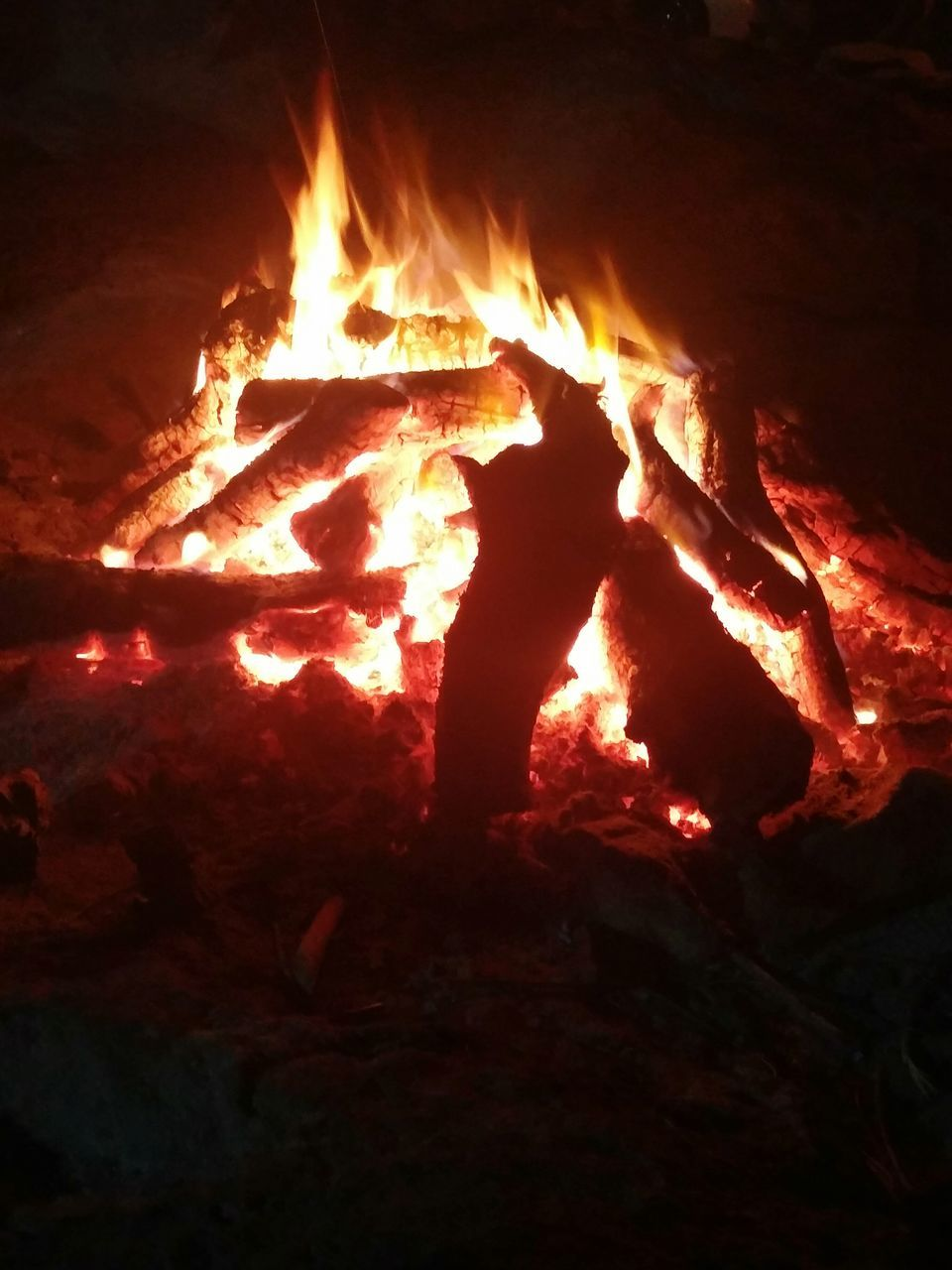 burning, heat - temperature, flame, glowing, night, no people, wood - material, bonfire, outdoors, close-up, nature