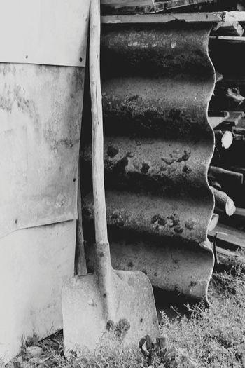 old. Photography Photooftheday Photographer Photograph Lifestyles Life Truelife Like Hobbyphotography Myhobby Creepy True Truestory Oldphoto Scare Scary Scarypics Creeper Plant Creeper Creativity