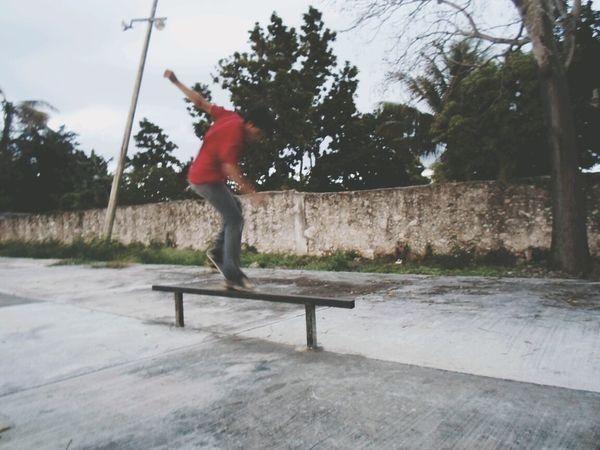 Skate Crocked Instagram Galerask8