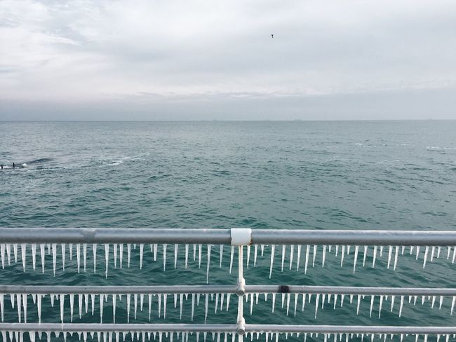 Sea Water Railing Nature Horizon Over Water Beauty In Nature Scenics Sky Outdoors No People Day Tranquility Bird Winter Winter Wonderland Icicles Ice Winter Beach