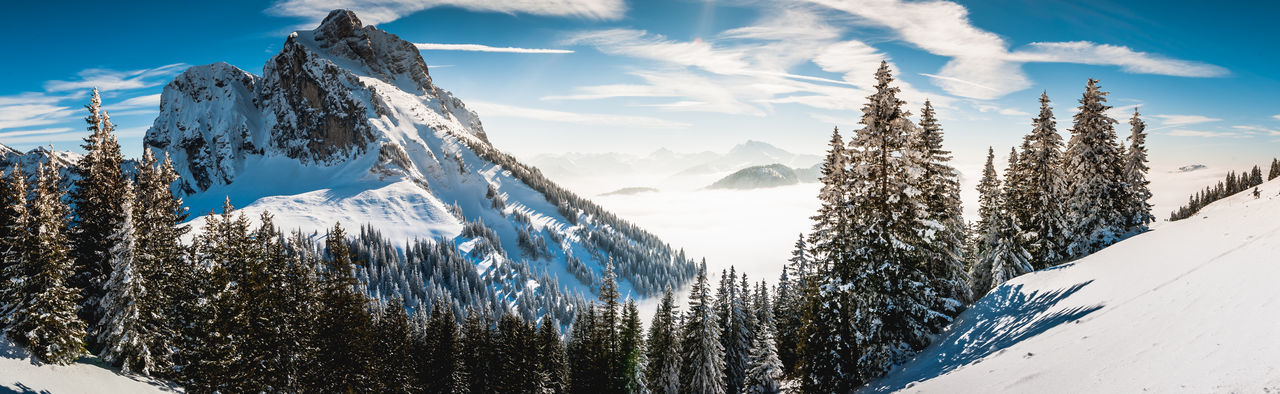 Beauty In Nature Blue Cloud - Sky Cold Temperature Day Frozen Landscape Mountain Mountain Peak Mountain Range Nature No People Outdoors Panoramic Pine Tree Scenics Sky Snow Snowboarding Snowcapped Mountain Sunlight Travel Destinations Tree Wilderness Area Winter