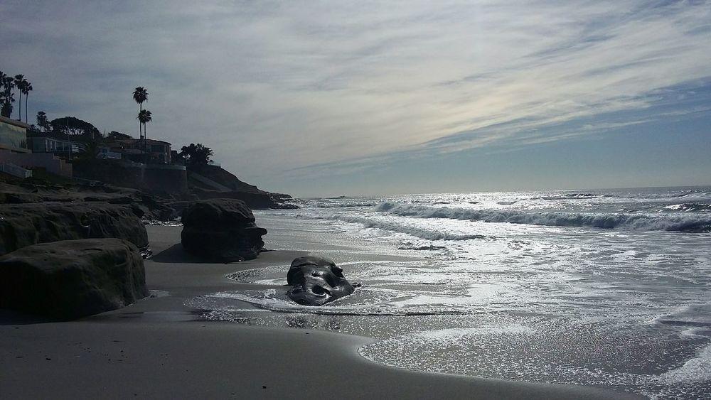 A beautiful January day, 2016 at Windnsea, La Jolla. Windnsea La Jolla Beach San Diego Ca First Eyeem Photo Sandiego Macro Beauty Ocean Surfing Nature Fun Peaceful Beautiful Nature Beauty In Nature