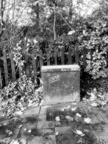 B&W glamorous junction box Street Scene Black And White Photography Day No People Outdoors Built Structure