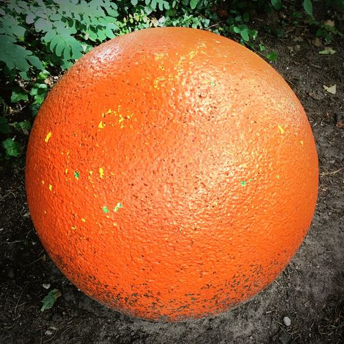 Orange Color Fruit Outdoors No People Close-up Food And Drink Day Healthy Eating Freshness Food Nature