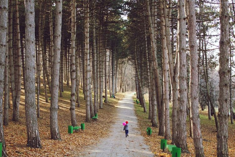 Girl walking on footpath amidst trees in forest