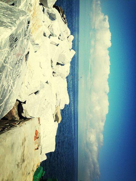Sea Leghorn Summer Paradise ❤️✌️