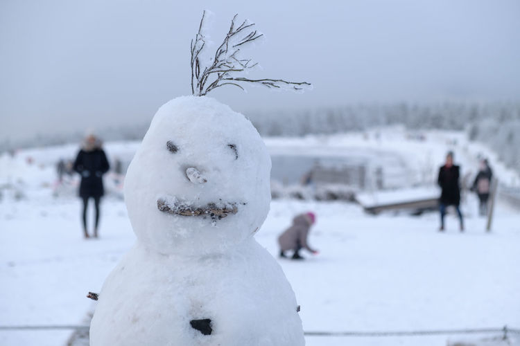 Close-up of snow man