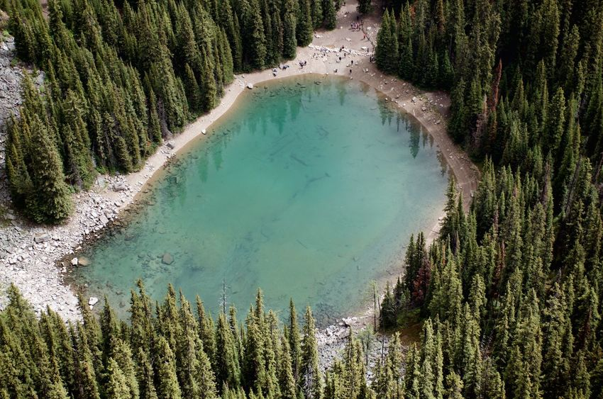 Banff National Park  Canadian Rockies  High Angel View Of Lake Hiking Blue Green Water Destination Forest Lake Glacial Lake Mirror Lake Mountain Range Reflection Lake Travel And Adventure