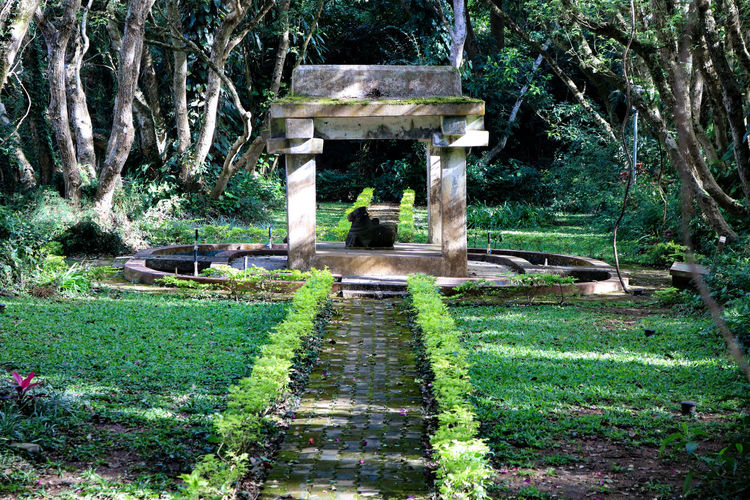 Monument Park Green Color Nature Outdoors Beauty In Nature Nandihills Nandi
