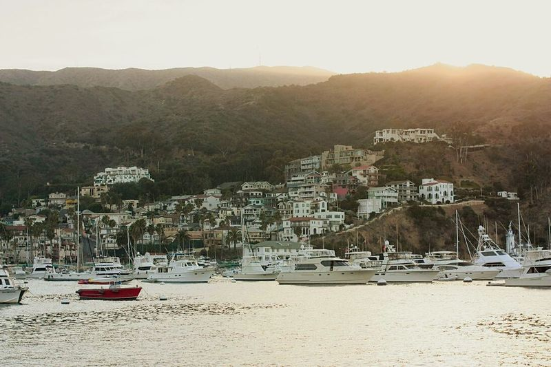 Avalon City In Catalina Island Southern California Jade And Anna Forever Fun Trip July 12th Ocean Pacific Yeah The Great Outdoors With Adobe The Architect - 2016 EyeEm Awards Travel My Favorite Photo