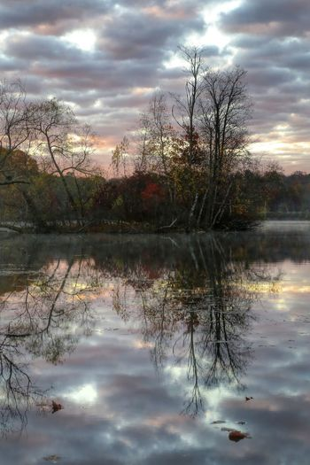 Soft Colors on an Autumn Morning Autumn Landscape Nature_ Collection  Reflection