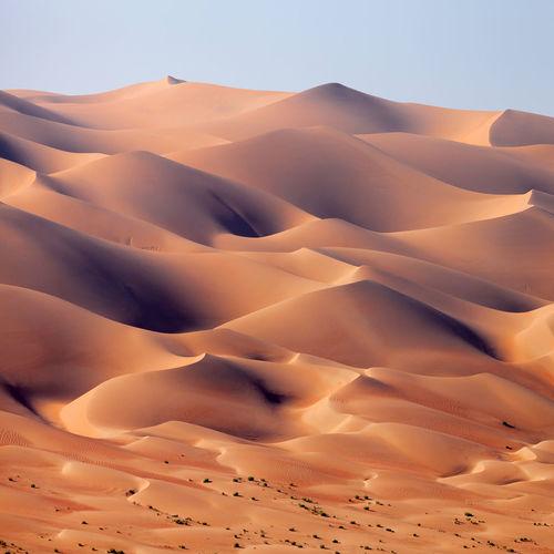 Desert landscape in the uae, sand dunes