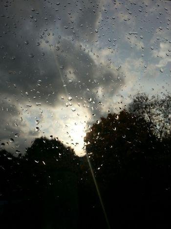 Rain Window Sky Cloud Wet Water Nature Stormy Storm Raindrops Focus On Foreground Rain Drops Rainy Day Raining Rain Clouds Trees Sillhouette Sun