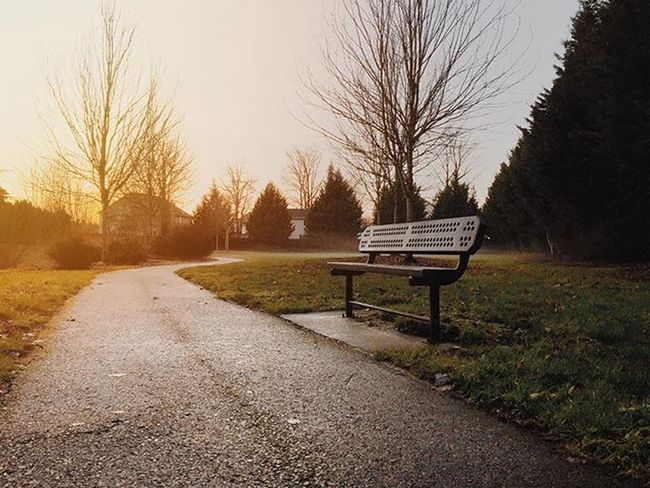 📷 Pacificnorthwest PNW Sun Picoftheday Instagood Bench Sky Trees Upperleftusa Washington Photographer Photo Beautiful Nature Winter Perspective Art IPhone IPhoneography