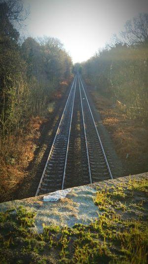 Train Tracks Train Tracks Delamere Delamereforest Cheshire England Nature Trees First Eyeem Photo