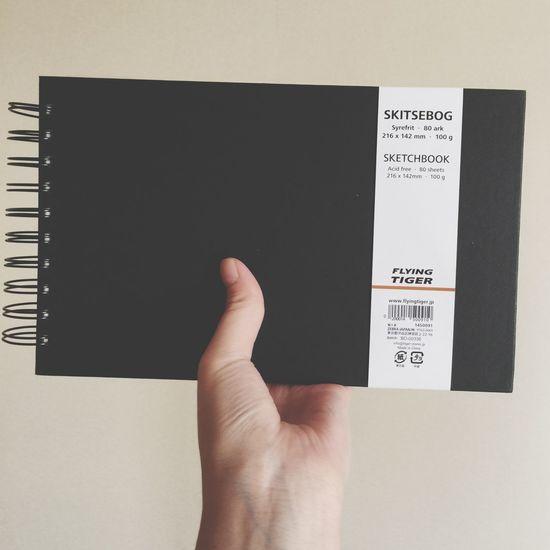 Frying Tiger Sketchbook