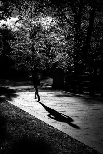 Active Active Lifestyle  Athlete Black And White Friday Full Length Growth Jogging Leisure Activity Lifestyles Nature One Person Outdoors People Real People Runner Running Shadow Shadows Shadows & Lights Silhouette Silhouettes Silhoutte Photography Southampton Tree Young Adult