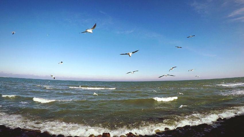 Gdynia Gdynia Poland Baltic Sea Baltic Gopro Goprohero4 Goprophotography Goprohero4silver Gopro Shots