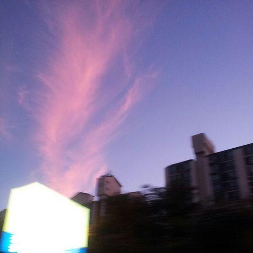 핑크색 불꽃  구름 Pink Cloud blue sky