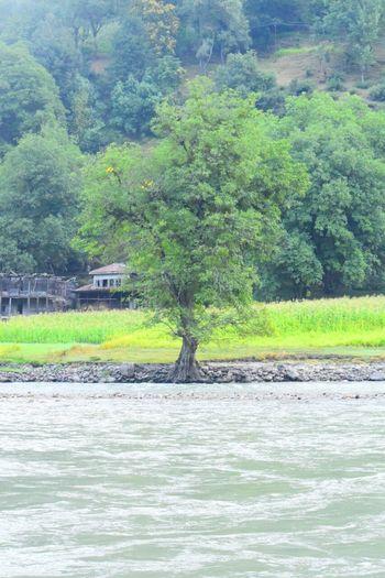 Heaven On Earth It Is.. Kashmir First Eyeem Photo