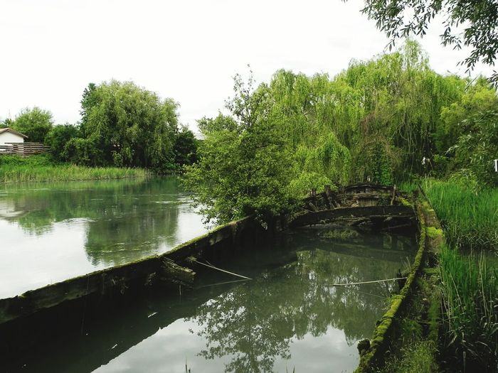 Water Laguna Lagoon Old Boats Wrecked Silent Green Treviso Italy