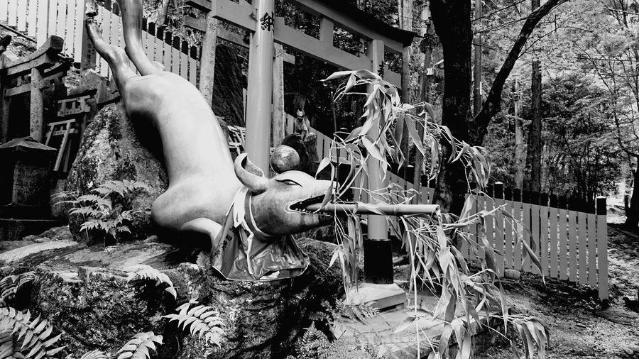 Monochrome Photography Shrine Of Japan Culture Fox Art And Craft Creativity No People Building Exterior Tourism Sculpture Famous Place Shrine Travel