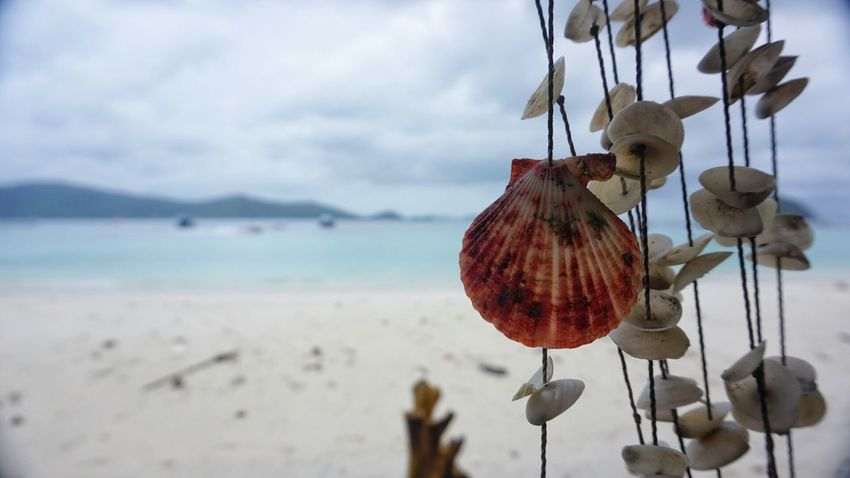 Hanging Beach Transportation Sea Mode Of Transport Tranquility Lantern Tranquil Scene Water Nature Vacations Sky Focus On Foreground Shore Beauty In Nature Cloud - Sky Scenics No People Non-urban Scene Mountain Range Shell Shell Photography