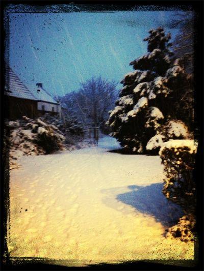 Sch*** Schnee