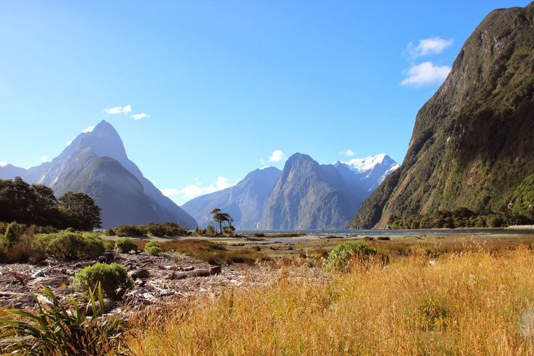 Beauty In Nature Countryside Day Geology Grass Idyllic Landscape Majestic Milford Sound Mountain Mountain Range Nature New Zealand Outdoors Remote Rock Formation Scenics Sky Sunlight Tranquil Scene Tranquility