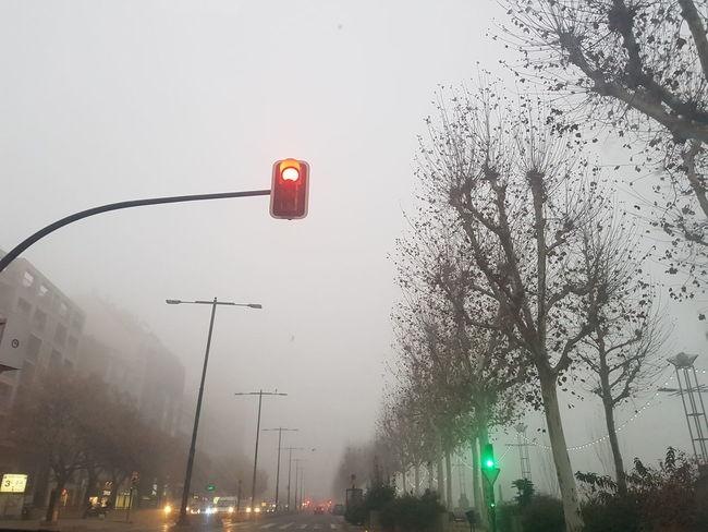 Navidad Nieblas#invierno#paisaje Niebla En La Ciudad Niebla Coches Semáfororojo Arboles Blanco Carretera Ciudad Stoplight Red Light Illuminated City Street Light Outdoors Night