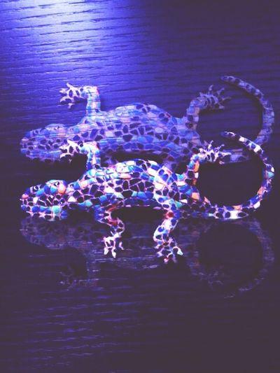 Geko Geckoleopard Gecko Art Gecko Lizard Gecko In The Dark Art Street Art Light In The Night Mosaic Moisaic Gecko Blue Color Gecko Hello World Check This Out This Is My Art!!! Streetart Street Life Mosaico Mosaik Mosaicart Mosaiques Mosaiquismo