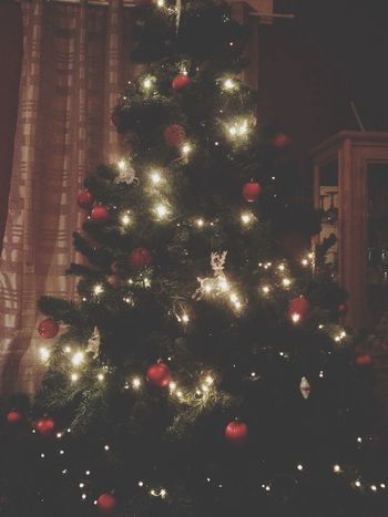 Christmas Tree Christmas Time this is my favorite time of the year