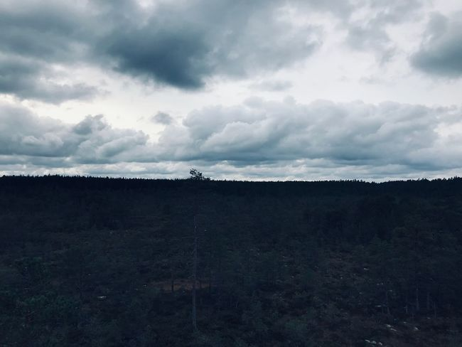Made With IPhone 7 No Effects Cloud - Sky Sky Landscape Nature Tranquil Scene Tranquility Environment Plant Field Overcast Beauty In Nature Scenics - Nature No People Non-urban Scene Land Day Outdoors Tree Dusk
